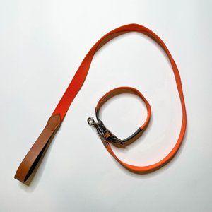Zara Orange and Brown Leash and Collar